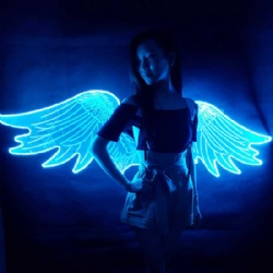 Acrylic LED Light Up Wings